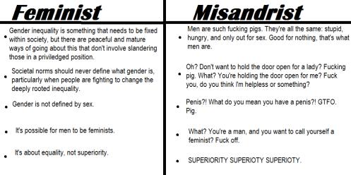 misandrist